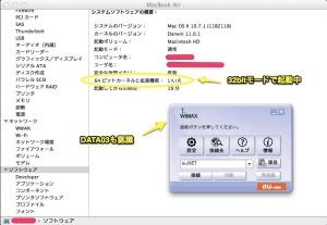 Lion_DATA03